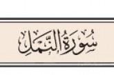 تأملات قرآنية من سورة النمل