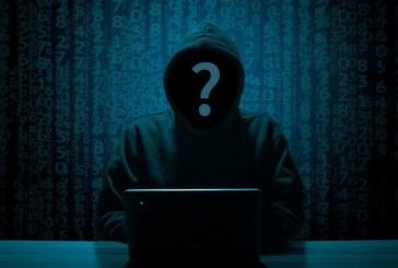 التقنية التي ظلمها قراصنة الويب: ما هو التورنت؟