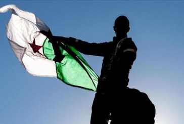 الإصلاحات الإعلامية الجزائرية وأثرها في تغطية الثورة التونسية، الصحافة الجزائرية أنموذجا