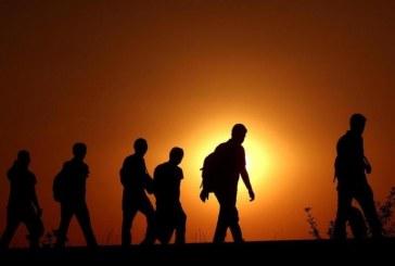 آثر الهجرة غير الشرعية على الجريمة المنظمة عبر الوطنية