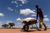 أبشع مجاعات العالم: أرقام مرعبة في 2019