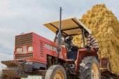 جني ثمار الرخاء من خلال الابتكار والتكنولوجيا في قطاع الزراعة