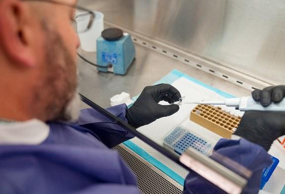 فيروسٌ يقاوِم فيروساً: علاج محتمل للوباء؟