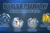 الأمن البيولوجي العالمي بين الإستغلال السياسي و الربح الإقتصادي