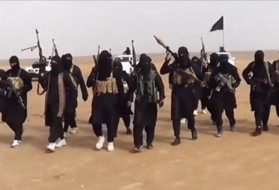 بعد عودة تحركات داعش ، بعضٌ ذهب الى أنها تحركات جاء بإيعاز أمريكي تأديباً على إخراج قواتها من العراق، وبعضٌ آخر يرى أنها تحركات بتحفيز إيراني لإعادة سيطرتها السياسية على العراق، فأي الآراء تؤيدون ؟