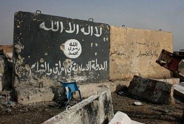 داعش في زمن كورونا: من انتكاسات الهزيمة إلى محاولات التجدد