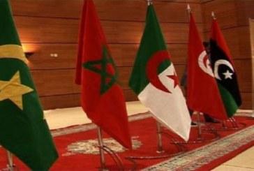 التكامل الإقليمي كآلية لدعم النمو الاقتصادي في اتحاد المغرب العربي