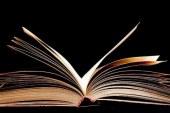 دراسة استقرائية لمقدمة معجم العين للخليل بن أحمد