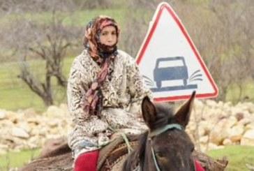البرامج الاجتماعية وإشكالية محاربة الفقر في المغرب