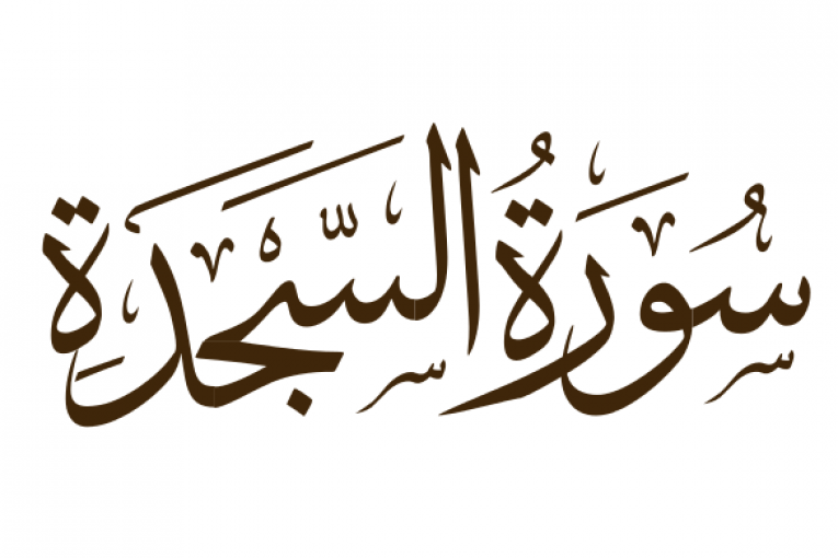 تأملات قرآنية من سورة السجدة مركز اضواء للدراسات