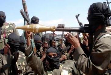 الإستراتيجيّة الجديدة لجماعة بوكو حرام في الغرب الإفريقيّ: المرتكز التكفيري والتّكتيك الجهاديّ